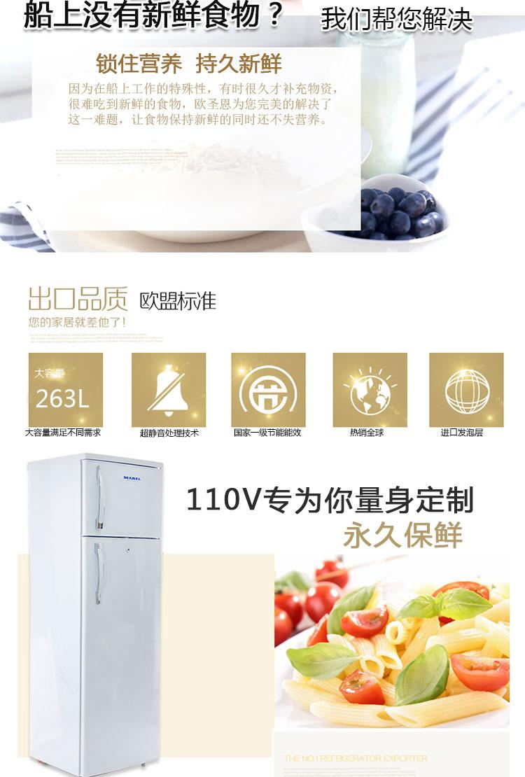 欧圣恩110V冰箱BCD-263_02.jpg