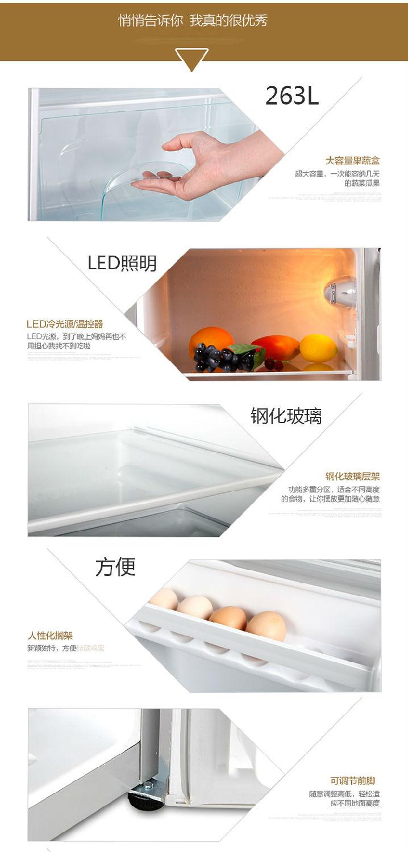 欧圣恩110V冰箱BCD-263_08.jpg