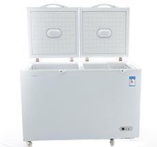 220V冰柜500L